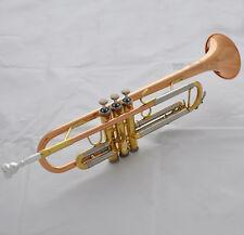 Prof phosphor copper straight line Cylinder Trumpet horn Monel Valves With Case