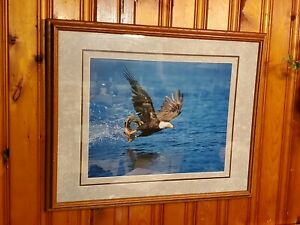 "Millcreek Wildlife Reflections Eagle Photo Hand Signed Framed 19 3/4x16"" 24""x30"""