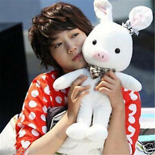L55cm Korean Drama You're Beautiful A.N.Jell Pig Rabbit Children's Day Doll Gift
