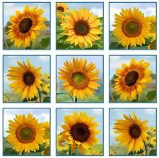 "23"" Fabric Panel - Elizabeth's Studio Sunflower Blocks on White Style 486"