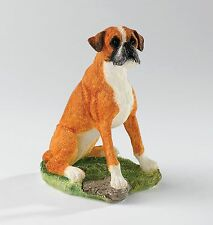 Border Fine Arts Red & White Boxer Dog Sitting  A24211  NEW IN BOX