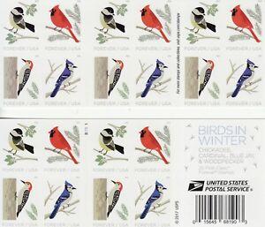 BIRDS IN WINTER STAMP BOOKLET -- USA #5320b FOREVER BIRDS 2018