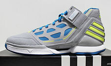 Adidas AdiZero DRose D Rose Derrick 2.0 2 II Simeon Wolverines NIB 10.5 DS NEW