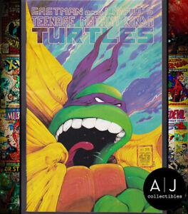 Teenage Mutant Ninja Turtles #22 NM- 9.2 (Mirage)