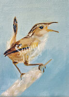 ACEO Miniature Painting, Marsh Wren Singing Tiny Bird print atc wildlife
