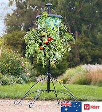 Topsy Turvy Tomato Tree Planter Upside-Down Herb Vegetable Planter