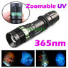 5W 365NM Geocaching Zoomable UV Flashlight Jewelry Mineral Amber Detector Torch