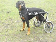 Chariot pour chien,