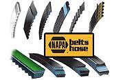 Belt Tensioner Assembly-Vortec NAPA/BELTS & HOSE-NBH 38158