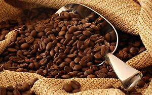 5lbs Organic Colombian Sierra Nevada Magdalena RFA, SMBC Med. Roast Coffee Beans