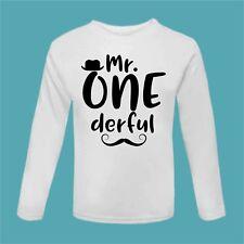 Mr One derful First Birthday t Shirt Wonderful Mr. Onederful Tee 1st Bday Cake