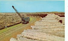 MINNESOTA , NORTHERN PULP WOOD STACK LOGGING INDUSTRY  (MG52)