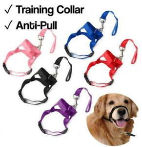 Training Dog Anti-Pull No Pulling Head Collar Harness Lead Walking Pet Control