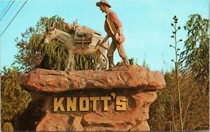 Greetings from Knott's Berry Farm and Ghost Town - prospector statue CA postcard