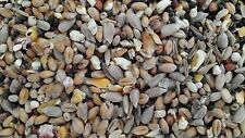 20kg Premium Wild Bird Seed, Food for All Seasons, Now with Sunflower Hearts !!