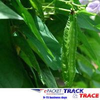 Details about  /5 Winged Bean Psophocarpus Tetragonolobus Seeds Mixed Edible Vegetables Plants