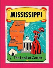 Jackson Mississippi Southern Belle Land of Cotton Decal
