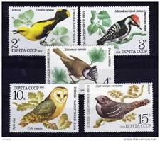 USSR 1979 Sowjetunion russia  Vogel Birds Owls 5v MNH**