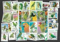 Parrots 100 all different stamps collection(includes budgies-macaws-Parrakeets)