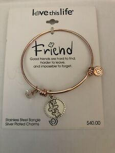 """Love This Life : """"Friends"""" Stainless Steel Bangle with Silver Plated Charms"""