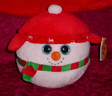 TY BEANIE BALLZ COLLECTION *** ICE BOX *** CUTE *** 2012