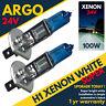 2 X Argo H1 466 24v 100w P14.5s Xenon Halogen Fog Headlight Headlamp Truck Bulb