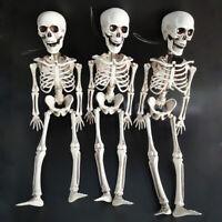 Life Size--BARNEY SKELETON--Human Skull Cheap Halloween Prop Building Decors RX