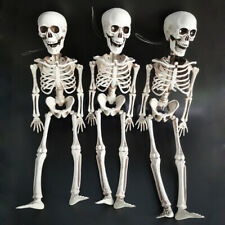 Life Size--BARNEY SKELETON--Human Skull Cheap Halloween Prop Building Decors ON