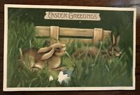 Cute~ Bunny Rabbits ~in Grassy Meadow Antique~Embossed~Easter Postcard-p45