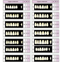 Dental B1 A1 A2 A3 Shade FullMouth Synthetic Resin Teeth Whitening Denture Tooth