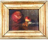 École française du XIXème - Nature-morte au rouge-gorge - Huile sur panneau