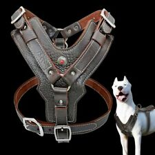 Dogs Vest Genuine Leather Pet Training Quick Control Handle Adjustable Harness