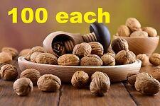 100 each Nutcracker made from natural oak wood - VERY SOLID - mushroom