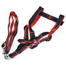 Adjustable Pet Dog Nylon Leash Harness Extra Large Gentle Dog Training