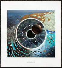 PINK FLOYD POSTER PAGE . 1995 PULSE LP ALBUM FRONT COVER ART . M74