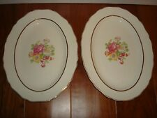 2 Canonsburg China Oval Serving Platter Vintage Retired Floral Rose Bouquet