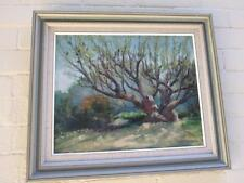 Australian Artist '' Peter James  -The Old Banksia Tree  - Oil Painting on Board