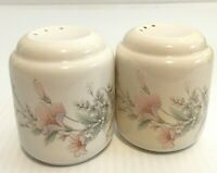 Deerfield Keltcraft Noritake Misty Isle Ireland Salt Pepper China Dinnerware