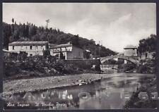 GENOVA SESTRI LEVANTE 95 RIVA TRIGOSO - PONTE Cartolina FOTOGRAFICA viagg. 1958