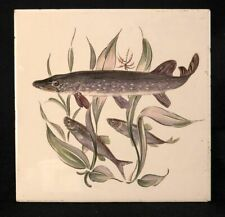 """1960s Villeroy & Boch Mettlach Tile with Northern Pike Fish Illustration, 6 x 6"""""""