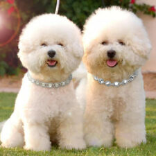 Bling Pearls Diamante Rhinestones Pet Puppy Cat Small Dog Necklace Collar Yorkie