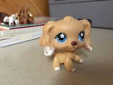 Littlest Pet Shop Collectible Cocker Spaniel Blonde Blue Eyes # 748