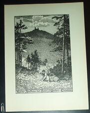 Ruine Andlau bei Barr, Unter-Elsass: alte Ansicht Druck ca 1920