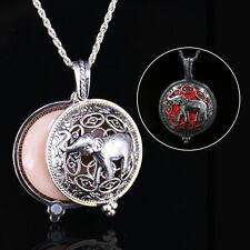 Unique Magic Fairy Glow in the Dark Pendant Hollow Out Locket Luminous Necklace