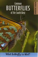 Common Butterflies of the South-West