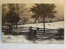 RPPC Quiet Beauty in the Ozarks, MO Horse Real DOPS Photo B&W Postcard Missouri