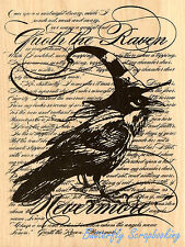 Raven Background Halloween Wood Mounted Rubber Stamp STAMPENDOUS Stamp R152 New