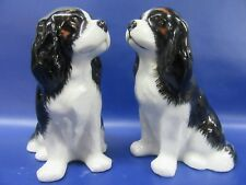 Cavalier King Charles Spaniel Salt & Pepper - Tri Cavalier Spaniel Salt & Pepper