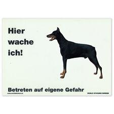 Schecker Warnschild Dobermann WEISS 28x20cm mit Rasseaufkleber Wetterfest