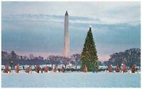 The National Christmas Tree Washington DC Washington Monument Postcard Vintage